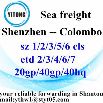 Shenzhen professional shipping agent to Colombo