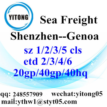 Shenzhen Sea Freight Shipping Service to Genoa