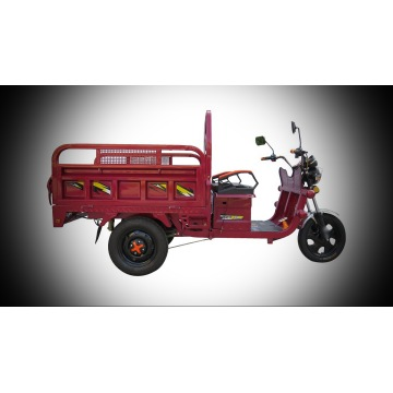 HS-Eeletric Tricycle 650W 48V12AH