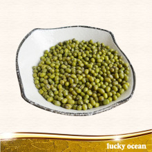 green mung bean well taste