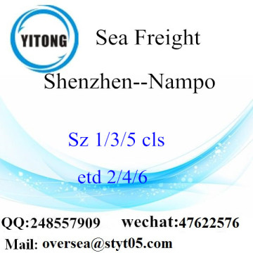 Shenzhen Port LCL Consolidation To Nampo
