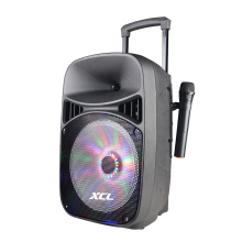 Speaker on sale for karaoke with mic
