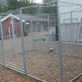 Hot Dipped Galv. Dog Kennel