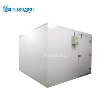 Commercial Walkin Cold Room Refrigeration