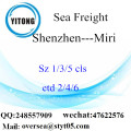 Shenzhen Port LCL Consolidation To Miri