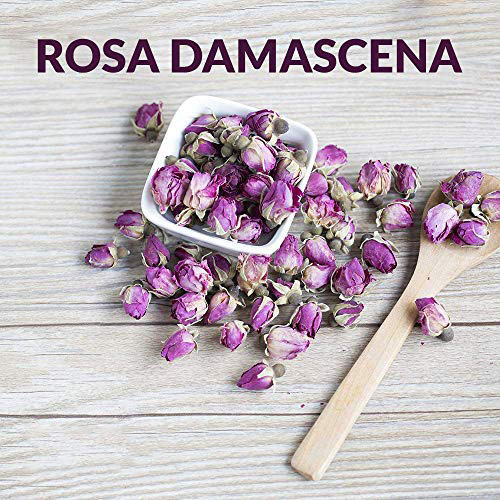 rosa damascena 5