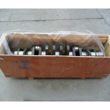 China for Small Engine Parts Howo Sinotruk Crankshaft 61500020071/61560020029 supply to Kyrgyzstan Manufacturer