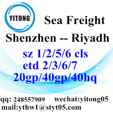 Shenzhen Sea Freight Shipping Services to Riyadh
