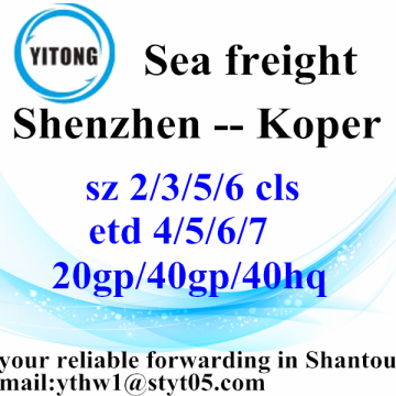 Shenzhen International Freight Forwarder Shipping to Koper