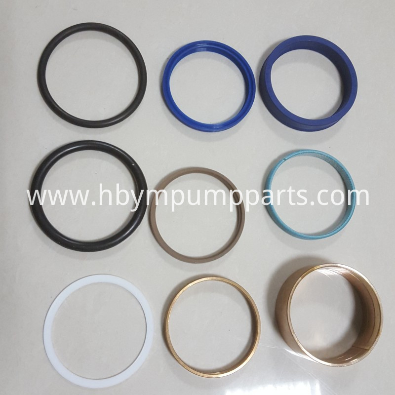 60 seal for plunger cylinder