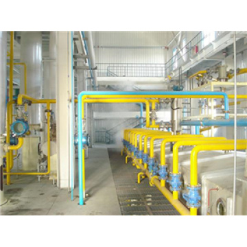 100t/d Cottonseed Protein Production Line