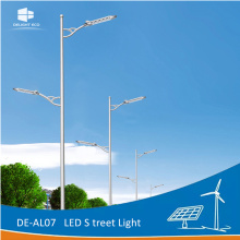 Customized for Solar Panel Street Light DELIGHT 8M Octagonal Pole Solar Street Light Lamp supply to Lithuania Exporter