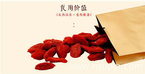 Chuanqi four seasons series goji berries orange