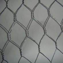 High Strength Stainless Steel Chicken Wire