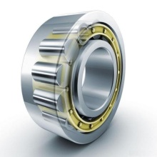 Double Row Cylindrical Roller Bearing (3282160/NN3060)