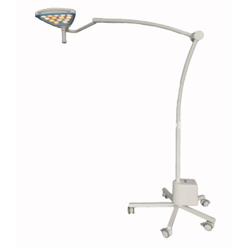 Portable beauty examination lamp