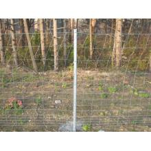 Hot sale Galvanized Sheep Goat Deer Farm Fence