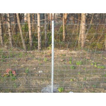 top quality goat farming fence with cheap price