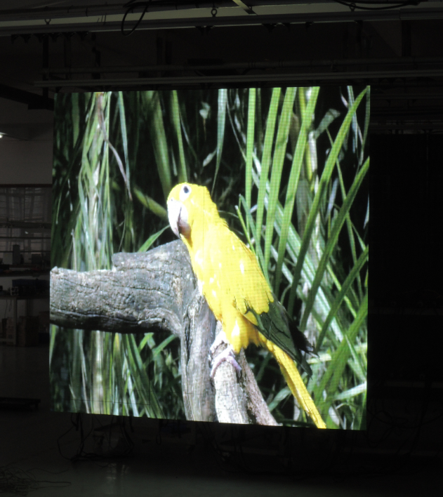Flexible led display screens of high display quality