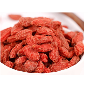 Organic goji berry good for vision and eyes