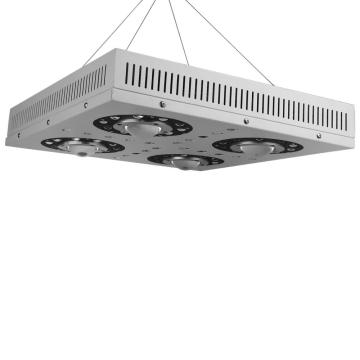 2018 New Techology Meanwell COB LED Grow Light