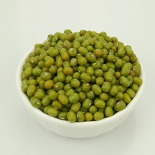 2017 Small Green Mung Bean For Sprouting