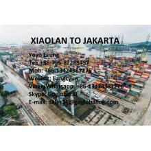 China for Best Sea Freight To Asia,Ocean Freight To Asia,Shipping To Asia,Asia Shipping Line for Sale Zhongshan Xiaolan Sea Freight to Indonesia Jakarta export to Russian Federation Manufacturer