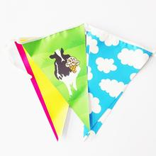 pvc colorful triangle birthday pennant bunting flags