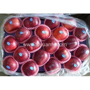 red delicious Huaniu apple for sale