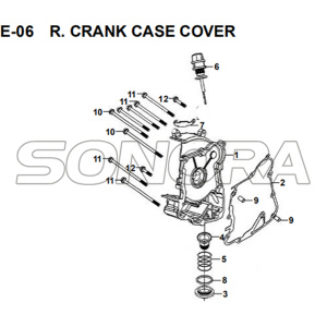 E-06 R. CRANK CASE COVER for XS175T SYMPHONY ST 200i Spare Part Top Quality