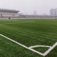 High reputation for Football Stadium Grass Artificial grass for sport supply to Nicaragua Supplier