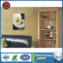 Best interior non toxic wall paint