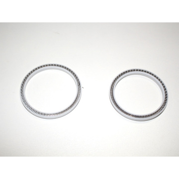 Spring Energized Seals--Support Customer Customization