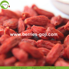 Lose Weight Nutrition Fruit Diet Common Goji Berries