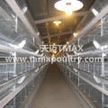 H Type Broiler Farming Equipment