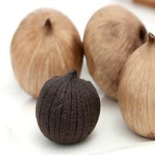 Single Black garlic with 30% water content