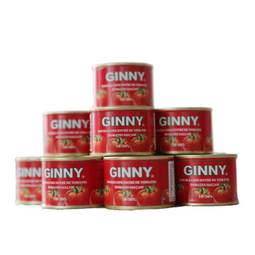Wholesale Tomato Paste Brands