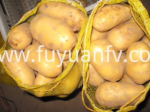 100-250g good potato