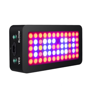 LED Grow Light for Greenhouse Bloom and Vegetable
