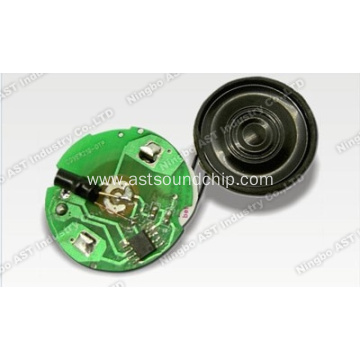 Music Chip for Greeting Card, Sound Chip, Voice Recording