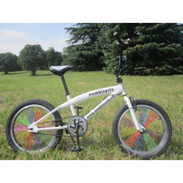 20 inch Good Quality Colorful Spokes BMX Bicycle
