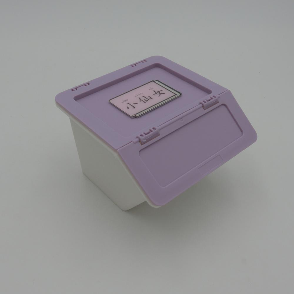 Foldable Plastic Box