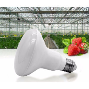 Mushroom Lamp 12w LED Grow Light