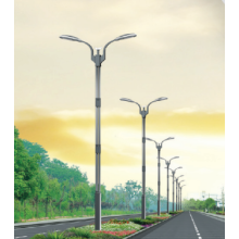 Leading for Led Street Lamp Bulbs Energy-saving LED Road Light export to French Polynesia Factory