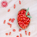 Vitamins Low Fat Nutrition Low pesticide Goji Berries