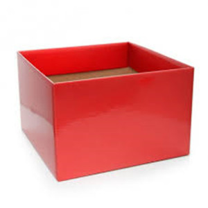 New Delivery for Rose Box Gloss posy boxes for flowers supply to Papua New Guinea Wholesale