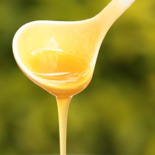sell bulk packaging 100% natural rape honey