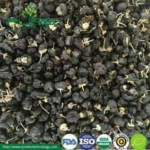 Wholesale Certified Organic dried black goji berry