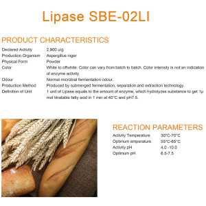 Lipase for baking enzymes
