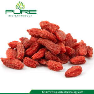 Sun Dried Ningxia Goji Berry 2017 New Crop